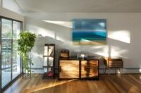 Hornstein Residence - modern - living room - denver